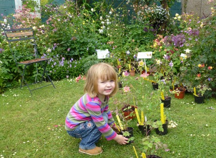 Early training pays dividends in a lifelong interest in gardening.